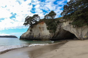 New Zealand Road Trip Adventures: Auckland and the Coromandel